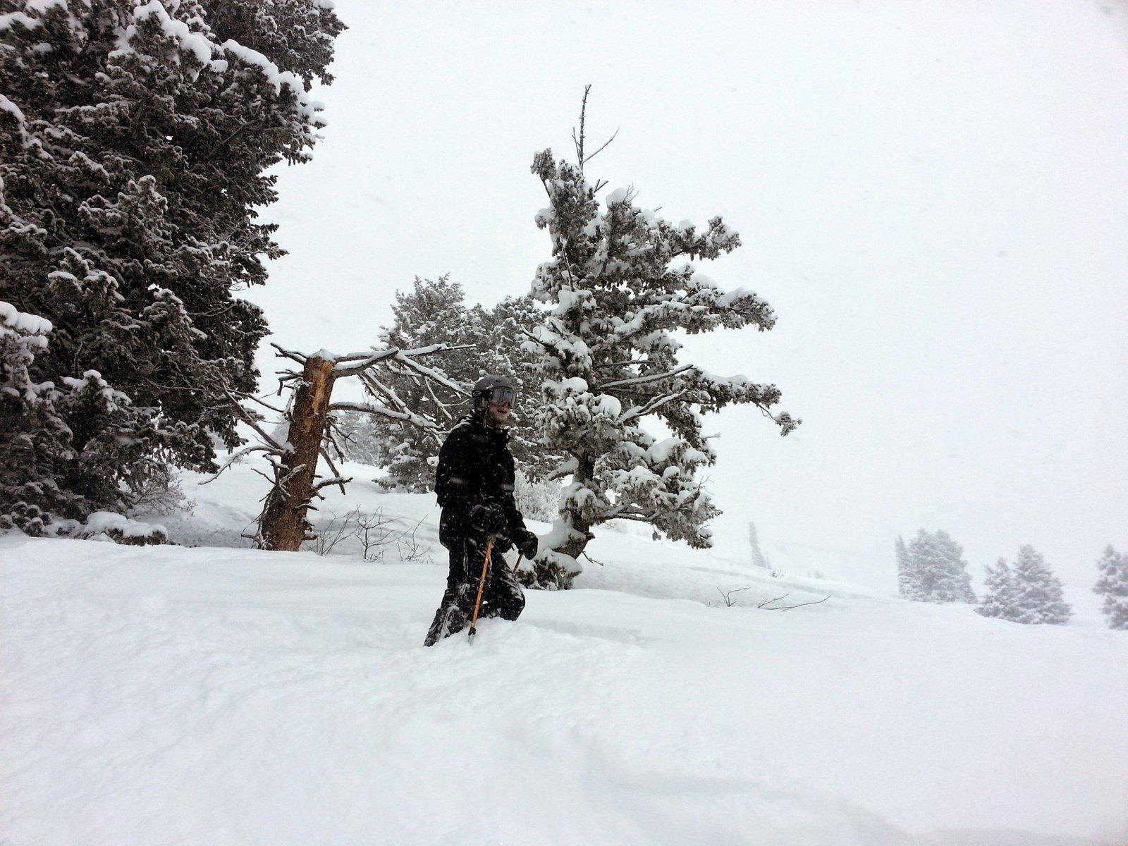 Sam in the snow