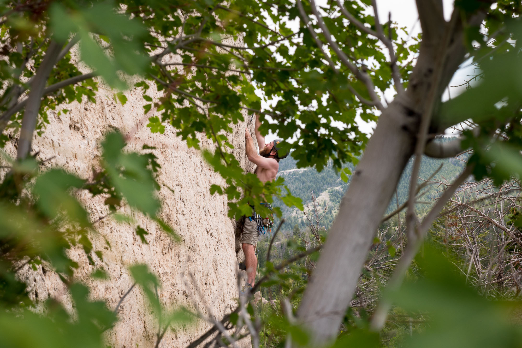 Will on a 10b