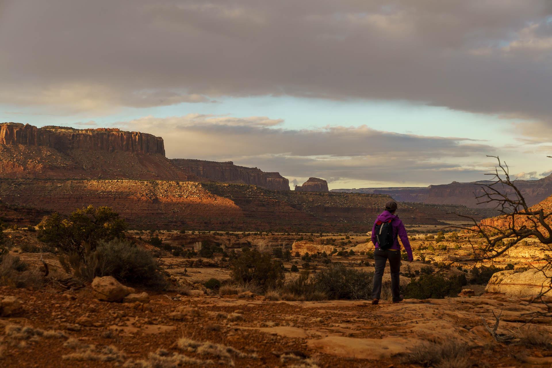 megan landscape